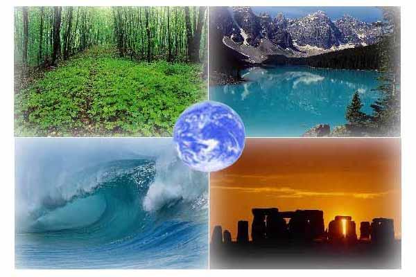 Ekologicheskie-problemy